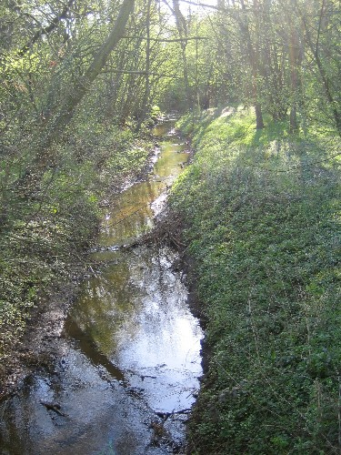 Der Schiffgraben in Poggenhagen - historische Verbindung von Leine und dem Toten Moor.