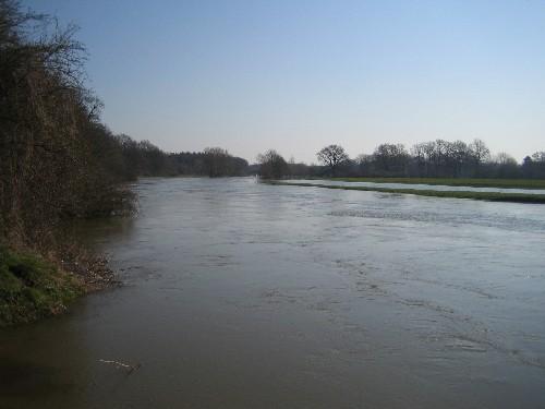 Die Leine bei leichtem Hochwasser bei Basse -- Foto: Dyck