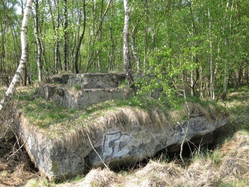 Fundamentreste der Beladestation der Drahtseilbahn im Moor