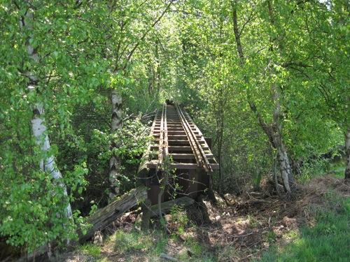 Relikte einer Brücke im Moor mit Schienenresten