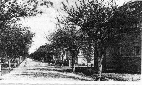 Die Wunstorfer Straße in Neustadt am Rübenberge um 1911