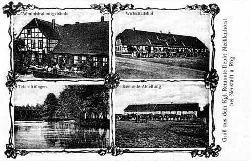 "Postkarte aus Mecklenhorst ca 1915 ""Gruß aus dem Kgl. Remonte- Depot Mecklenhorst bei Neustadt a. Rbge"" (Postkarte:Reg Archiv in Neustadt)"