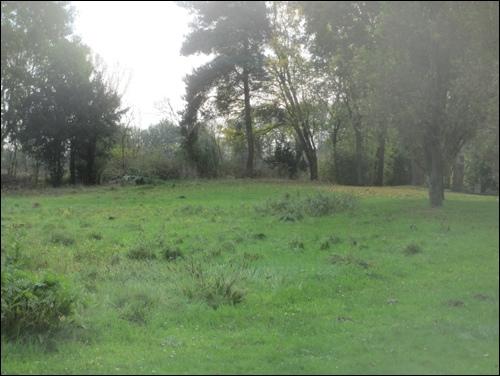 Der im Friedhofsgelände gelegene Teil der Lüningsburg (Foto:Dyck)