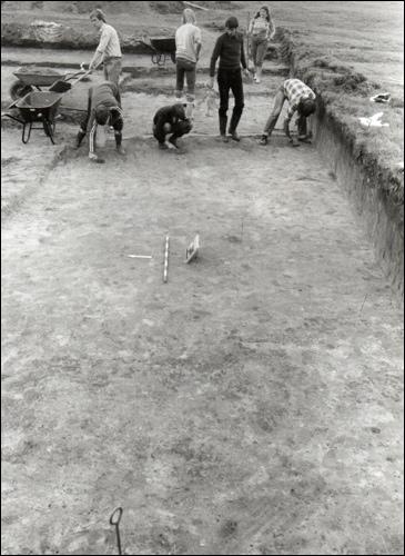 "Ausgrabungen an der historischen Ringwall Festung ""Lüningsburg"" in Neustadt"