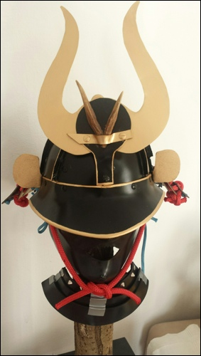 Helmet and Neck Guard
