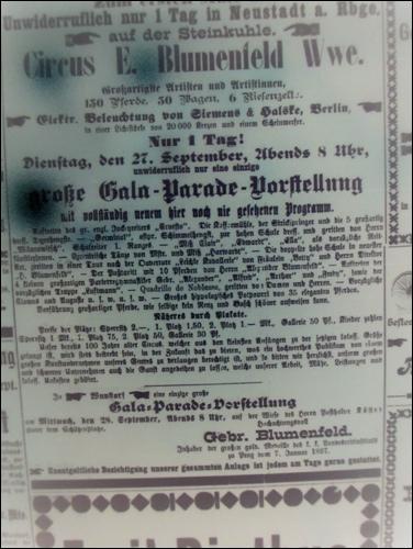"""Zirkus Blumenfeld """"auf der Steinkuhle"""" - Ankündigungen in der Leinezeitung um die Jahrhundertwende 1900"""