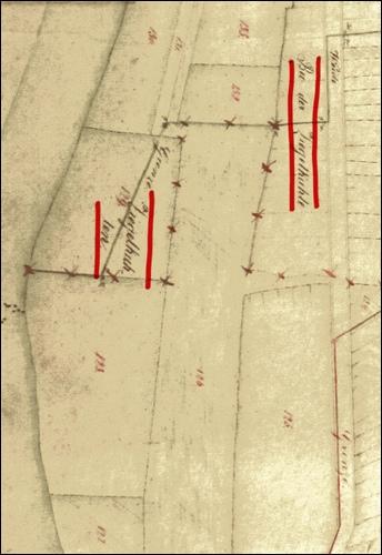 """Im Plan von 1851 sind Ton- Gewinnungsflächen an der Leinemasch als """"Ziegelkuhle"""" oder """"Bei der Ziegelkuhle"""" verzeichnet. Aufgenommen vom Moorvogt Lücke."""