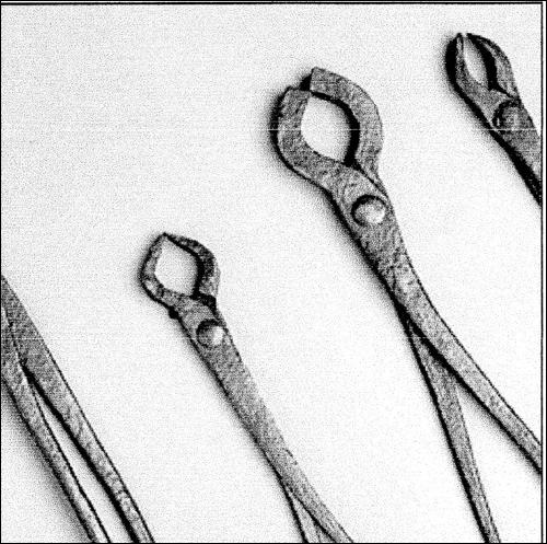 """Strafverschärfend wurden die """"Hexen"""" vom Scharfrichter mit glühenden Zangengefoltert. Diese Abbildung haben wir aus aus Wikipedia """"Edmund Hausfelder für Stadtmuseum Ingolstadt"""" mit vielem Dank entliehen."""