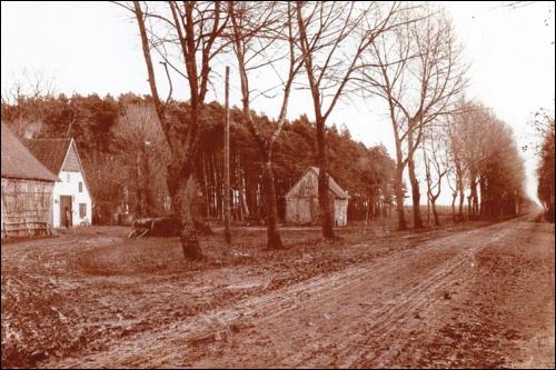 Historisches Bild: So könnte der Dammkrug um 1900 ausgesehen haben. Im Vordergrund die heutige B6.(Dieses Foto diente auch dem Künstler Kaemling als Vorlage für eine Federzeichnung in der Neustadt- Chronik von Winkel)