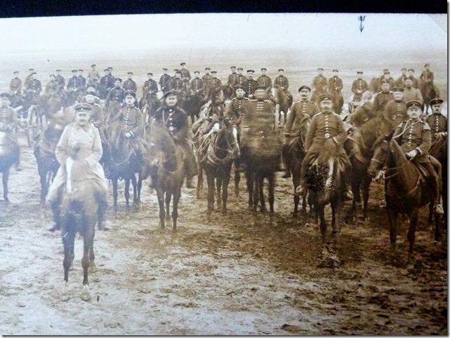 Remonte - Militärpferde im Einsatz (Foto: R.Marwede)