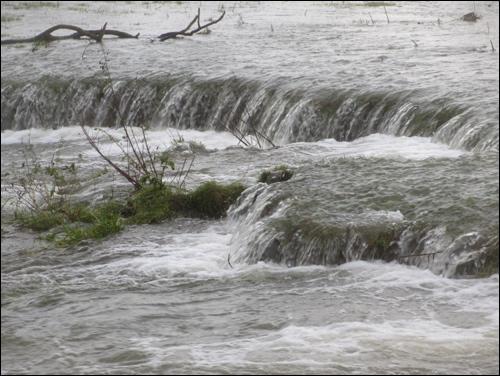 Hochwasser in Neustadt am Rübenberge - die Leine läuft über.
