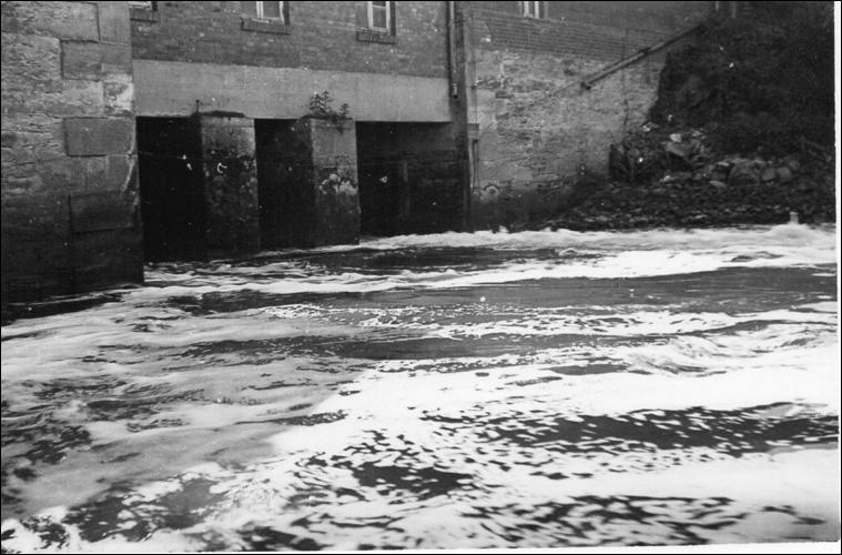 Hochwasser: Überschwemmung und Wasserfluten vor der Mühle Neustadts