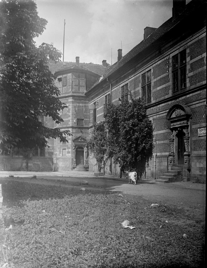 Ziege im Schlosshof